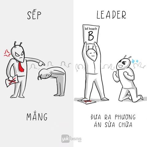 'Sep' va 'leader': Tuong khong khac ma khac khong tuong hinh anh 8