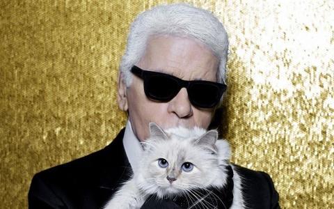 Chan dung co meo quy toc cua nha thiet ke huyen thoai Karl Lagerfeld hinh anh