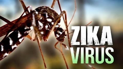 virus zika tai viet nam hinh anh