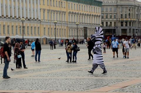 #Mytour: Dem trang va cai lanh thau cua Saint Petersburg mua World Cup hinh anh 20