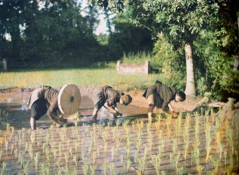 'Tuc ngu phong dao': Di san van hoa dan gian cua dan toc Viet hinh anh 3