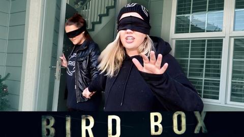 Bird Box Challenge lan truyen khap mang xa hoi hinh anh