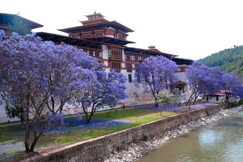 Den Bhutan, ngam phuong tim no rop troi vuong quoc hanh phuc hinh anh 2