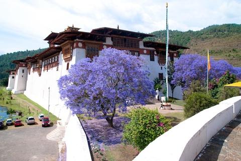 Den Bhutan, ngam phuong tim no rop troi vuong quoc hanh phuc hinh anh 3