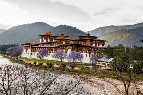 Den Bhutan, ngam phuong tim no rop troi vuong quoc hanh phuc hinh anh 9