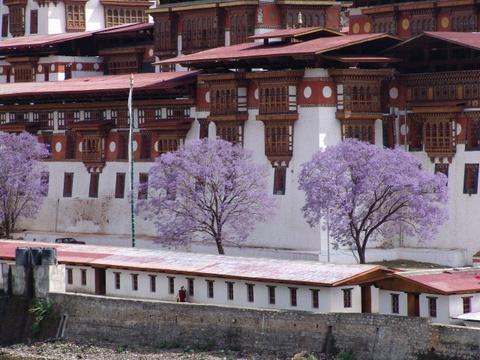 Den Bhutan, ngam phuong tim no rop troi vuong quoc hanh phuc hinh anh 8
