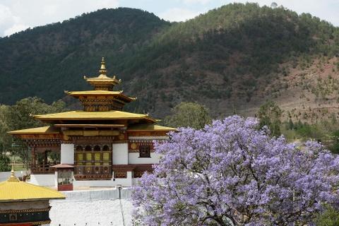 Den Bhutan, ngam phuong tim no rop troi vuong quoc hanh phuc hinh anh 5