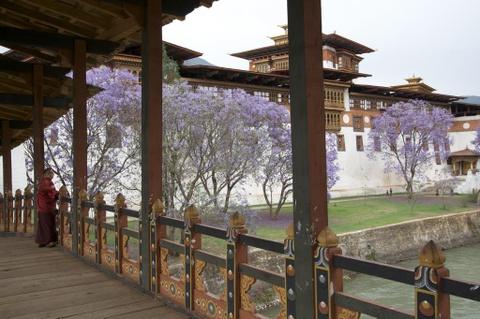 Den Bhutan, ngam phuong tim no rop troi vuong quoc hanh phuc hinh anh 6