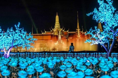 'Canh dong Hoang gia' Thai Lan ruc sang, chao mung nha vua dang quang hinh anh 7