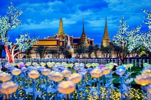 'Canh dong Hoang gia' Thai Lan ruc sang, chao mung nha vua dang quang hinh anh 1