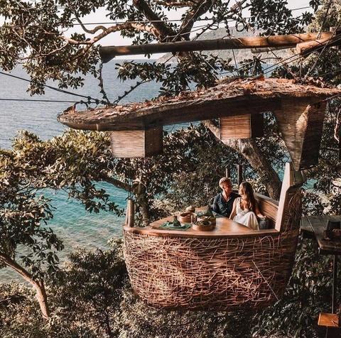 Trải nghiệm lơ lửng trên cây, dùng bữa trong 'tổ chim khổng lồ'