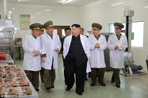 Kim Jong Un tuoi cuoi tham trang trai nuoi lon cua khong quan hinh anh 1