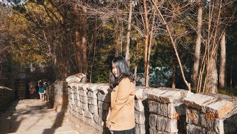 Check-in 'Van Ly Truong Thanh' thu nho trong long Da Lat hinh anh 1