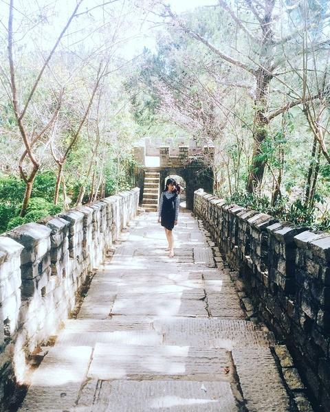 Check-in 'Van Ly Truong Thanh' thu nho trong long Da Lat hinh anh 2