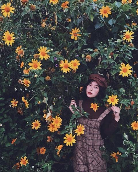 Cam tu cau, lavender va 5 mua hoa no dep nhat Da Lat hinh anh 3