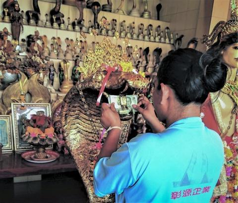 Ran ho mang Thai Lan: Vua duoc ton tho, vua la dac san hinh anh 4