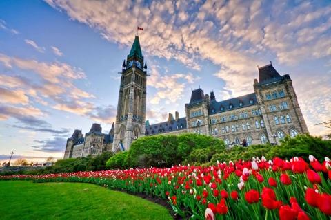 Canada - 'Thien duong du lich ha gioi' khi buoc vao mua he hinh anh 1
