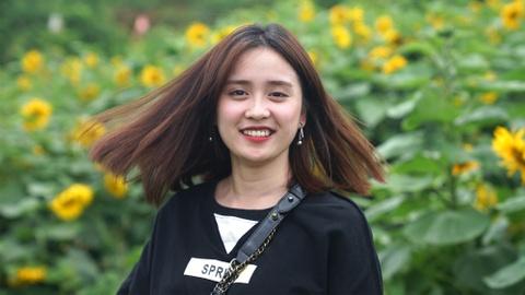 Gioi tre ru nhau check-in canh dong hoa huong duong o Fansipan hinh anh