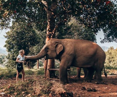Thoi tiet dip Tet Nguyen dan: Thai Lan nang dep, Singapore co mua hinh anh 5