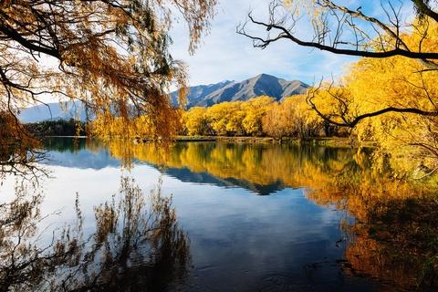 Chiem nguong New Zealand do vang giua nhung ngay thang 5 hinh anh 12