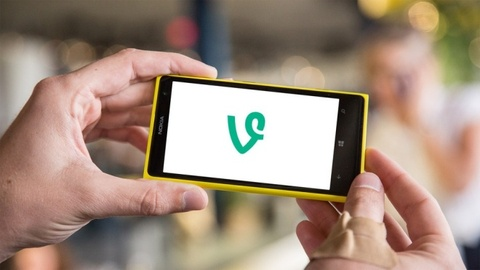 Vine bat dau len Windows Phone hinh anh
