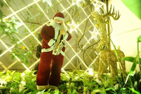 Khu vuon Noel dep long lay cua sinh vien Thang Long hinh anh 6 Phía ngoài vườn là tượng xốp của ông già noel, tuần lộc và người tuyết.