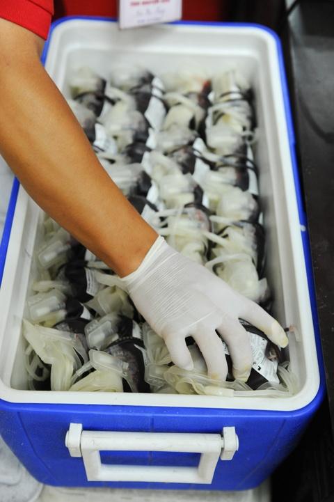 Nguoi dan Thanh Hoa doi mua bao di hien mau hinh anh 11