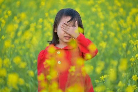 Gioi tre check-in dong hoa cai vang ben song Hong hinh anh 10