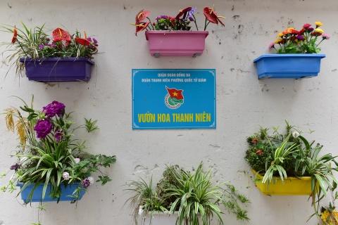 Bai rac don 10 nam khong sach bien thanh vuon hoa hinh anh 6