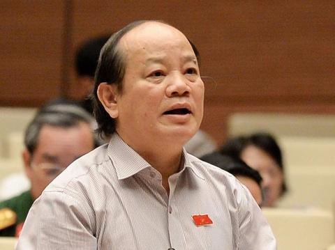 'Bao cao tron trinh nhu the thi hong phuc cho dan' hinh anh