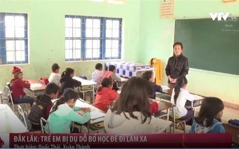 Dak Lak: Tre em bi du do bo hoc di lam thue xa hinh anh