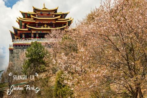 Kinh nghiem phuot Le Giang - Shangri-La tu A den Z hinh anh 1