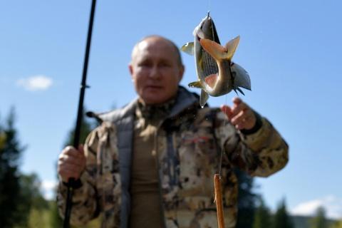 Tong thong Putin di cau ca o Siberia hinh anh