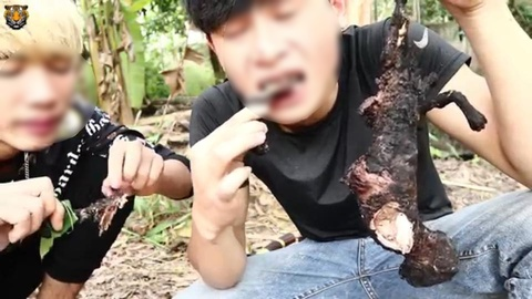 Cong dong mang chi trich video phan cam cua YouTuber an thit meo hinh anh