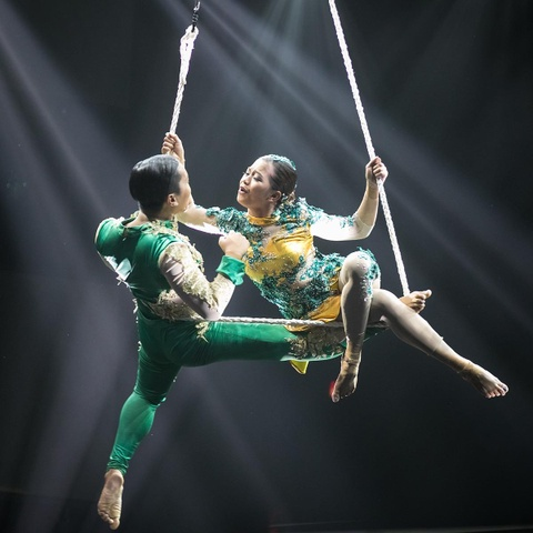 9 phan thi dinh cao tai chung ket Asia's Got Talent 2019 hinh anh 9