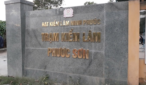 4 phat sung hinh anh