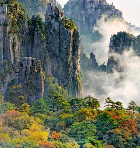 Tien canh dinh Quang Minh noi vo lam quan tu hinh anh 4 Hoàng Sơn có hệ động thực vật phong phú, mỗi độ cao lại có các loài cây đặc trưng. Trong đó, du khách không khỏi thán phục khi chiêm ngưỡng những cây thông tuyệt đẹp bám vào vách đá. Ảnh: Globalgeopark.