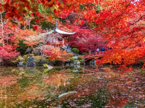 Ha Noi vao top nhung diem den dang mo uoc nam 2016 hinh anh 2 Kyoto, Nhật Bản: Đây là năm thứ 2 liên tục Kyoto được vinh danh là thành phố tuyệt vời nhất thế giới bởi Travel + Leisure dựa theo bình chọn của độc giả. Thành phố này mang đậm dấu ấn lịch sử, với nhiều đền miếu cổ, các khu chợ, công viên xinh đẹp.