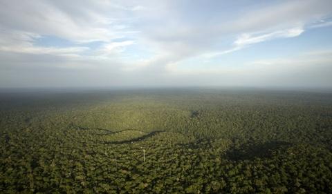 Cuoc song chat vat cua con nguoi trong rung Amazon hinh anh 1 Rừng Amazon là một trong những nơi đẹp nhất trên trái đất. Khu rừng khổng lồ này bao phủ 40% diện tích Nam Mỹ, trải rộng hơn 5,5 triệu km2.