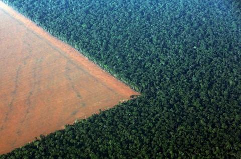 Cuoc song chat vat cua con nguoi trong rung Amazon hinh anh 11 Khai thác mỏ, phá rừng và hạn hán thường xuyên đe dọa cuộc sống của họ.