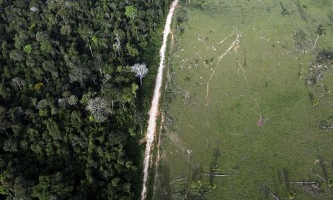 Cuoc song chat vat cua con nguoi trong rung Amazon hinh anh 13 Chính phủ Brazil đã nỗ lực giảm nạn phá rừng, với mục tiêu đạt 80% vào năm 2020, nhưng vẫn chưa đạt nhiều kết quả.