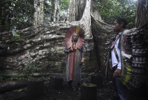Cuoc song chat vat cua con nguoi trong rung Amazon hinh anh 5 Một số nhóm người, như Yanomamo và Kayapo, được cho là đã định cư ở đây từ hàng nghìn năm trước. Mối quan hệ của họ với thiên nhiên vô cùng linh thiêng.