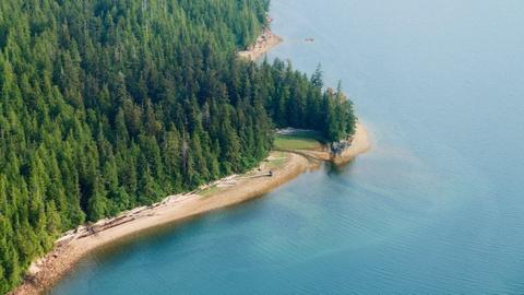 Nhung khu rung co xua nhat trai dat hinh anh 10 Rừng quốc gia Tongass, Alaska, Mỹ: Ánh nắng xuyên qua những tán cây vân sam khổng lồ, trong số đó nhiều cây đã 700 tuổi, làm bừng sáng nền rừng xanh biếc, tạo cảnh tượng kỳ vĩ tới khó tin. Tongass là rừng quốc gia lớn nhất Mỹ, lưu giữ được những khoảng rừng cổ xưa đã hàng nghìn tuổi của Bắc Mĩ. Ảnh: Rừng quốc gia Tongass, Alaska, Mỹ: Ánh nắng xuyên qua những tán cây vân sam khổng lồ, trong số đó nhiều cây đã 700 tuổi, làm bừng sáng nền rừng xanh biếc, tạo cảnh tượng kỳ vĩ tới khó tin. Tongass là rừng quốc gia lớn nhất Mỹ, lưu giữ được những khoảng rừng cổ xưa đã hàng nghìn tuổi của Bắc Mĩ.