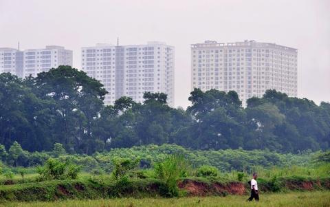 Ha Noi hien dai tu goc nhin ven do hinh anh 10 Nhiều làng, xã vùng ven của Hà Nội trước đây sống bằng nghề nông nay cũng chuyển dần sang nghề khác vì đất canh tác bị thu hẹp hoặc không còn.