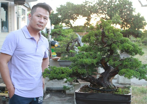 Bang Kieu khoe vuon bonsai tien ty o My hinh anh