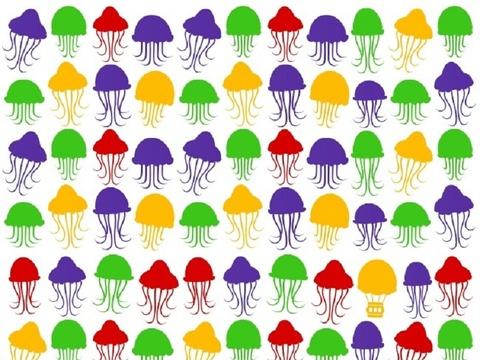 Lời giải cho câu đố tìm khinh khí cầu giữa đàn sứa đang bơi