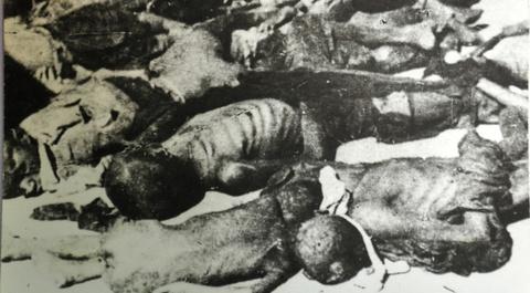 Chuyen chua ke ve cong trinh nghien cuu nan doi 1945 o Viet Nam hinh anh