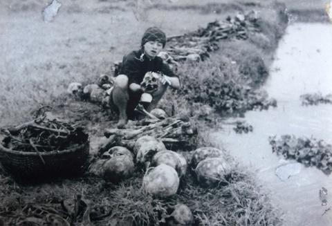 Nhung cai chet day am anh trong nan doi 1945 hinh anh