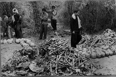 Toi ac kinh hoang cua quan Pol Pot qua ky uc nguoi An Giang hinh anh
