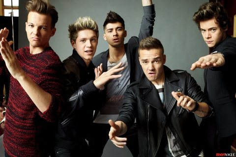One Direction co suc hut 'khung' tren mang xa hoi hinh anh